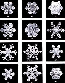 220px-SnowflakesWilsonBentley
